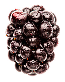 Fresh BlackBerry!