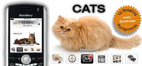 Cats Theme for BlackBerry