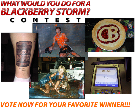 Vote for Your Favorite Winner!!