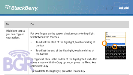 Copy and Paste on the BlackBerry Storm