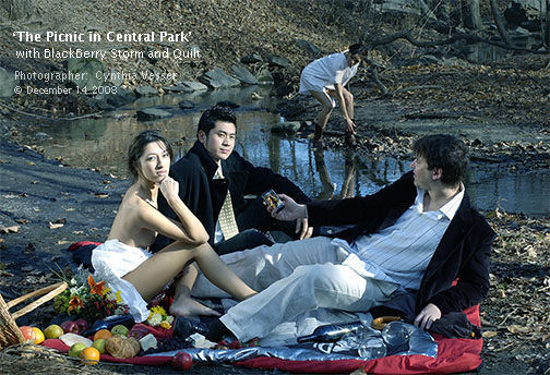 The Picnic in Central Park