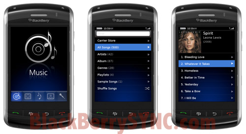 BlackBerry Thunder Music Player