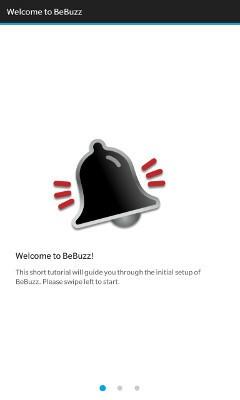 BeBuzz initial setup