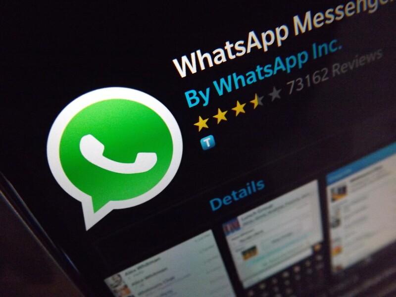 wam whatsapp