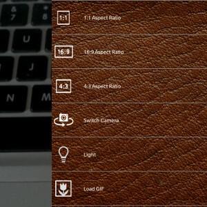 VideoGIFer GIF Options