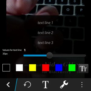 VideoGIFer Text Edit