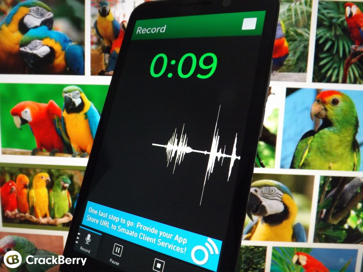 Parrot - Voice Recorder