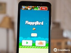 What's your high score in Flappy Bird?