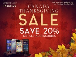 Save 20% on all BlackBerry Accessories!