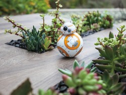 Enter CrackBerry's contest, and May the Fourth be with you