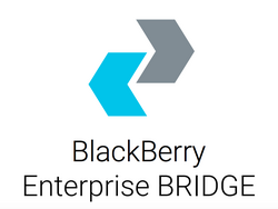 BlackBerry scores CRN Tech Innovators Editor's Choice Award
