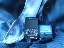 BlackBerry Professional Case and Accessory Guide