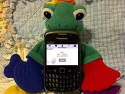 BabyBerryApps bonds babies, birth and BlackBerry