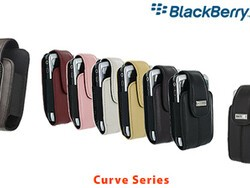 BlackBerry Case Review: BlackBerry Leather Holster with Swivel Belt Clip for BlackBerry Curve, Pearl, 8800 Series
