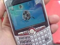 New Blackberry 8300 Daytona Discovered
