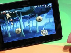 Unleash the birds in Rope Rescue for the BlackBerry PlayBook