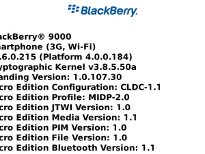 BlackBerry Bold OS 4.6.0.215 Found in the Wild!