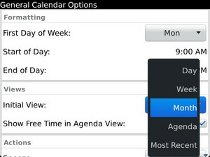 How to change the default view on the native BlackBerry Calendar app