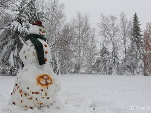 Friday Fun Contest: Name the CrackBerry Snowman!