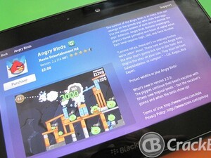 Angry Birds updated for the BlackBerry PlayBook - Brings 15 new tropical levels