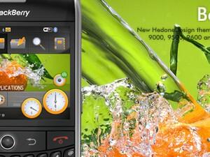 BerryShell - Premium BlackBerry Theme From Hedone Design
