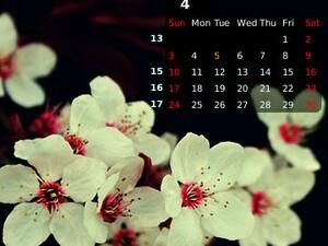Calendar Wallpaper by MMMOOO