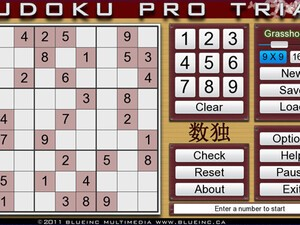 A quick look at Sudoku Pro for the BlackBerry PlayBook by blueinc multimedia
