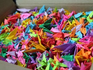 BlackBerry fan folds ONE THOUSAND origami paper cranes and makes a wish for the success of BlackBerry 10!