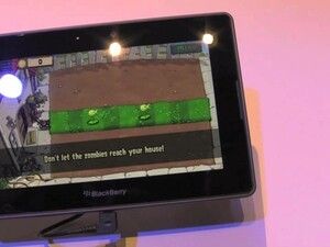 Plants vs Zombies for the BlackBerry PlayBook