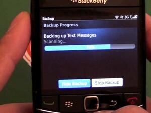 Quick Review: BlackBerry Protect