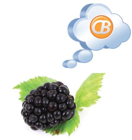 BBOCI for BlackBerry