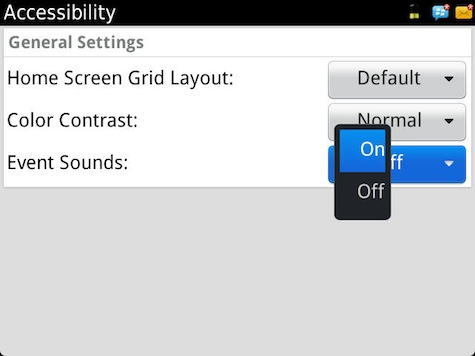 BlackBerry Accessibility Options