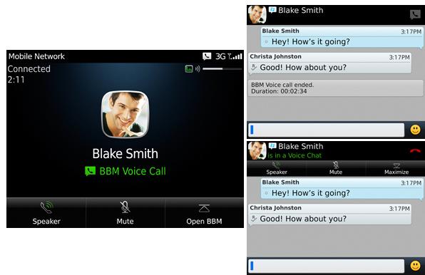 BBM Voice Survey