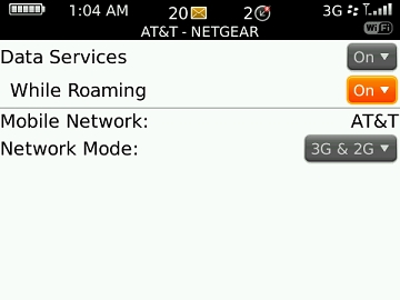Manage data while roaming