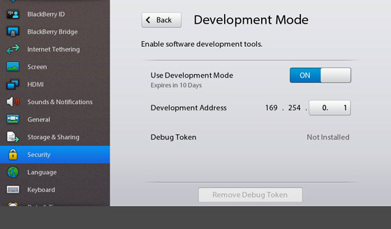 Enable Developer mode on the PlayBook