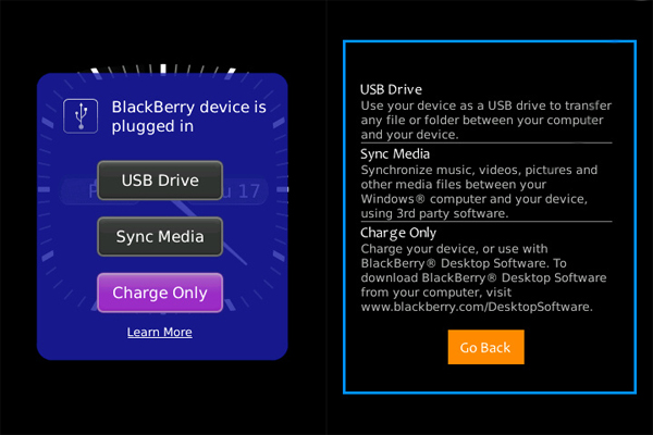 BlackBerry 6 USB connection