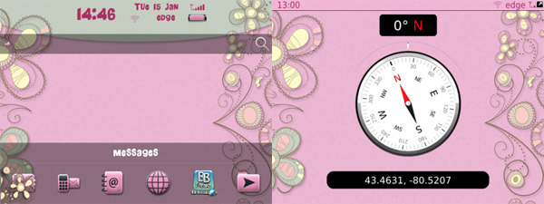 Girly Flowers Theme