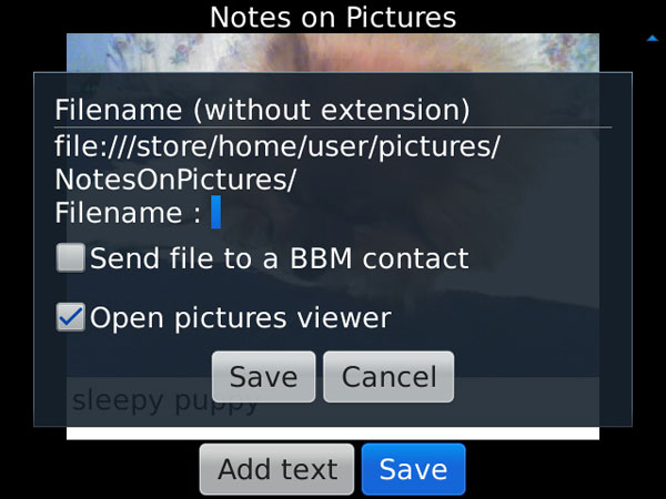 Notes on Pictures - Save
