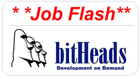 bitHeads Job Posting