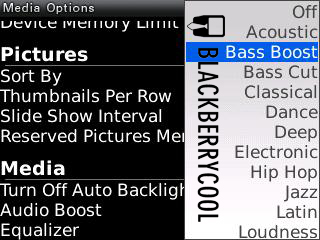 BlackBerry Media Player