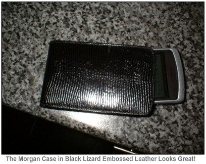 RexRegina Morgan Case looks Great!