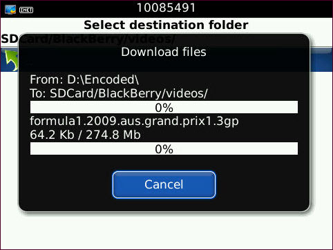 Files Downloading Via RDM+