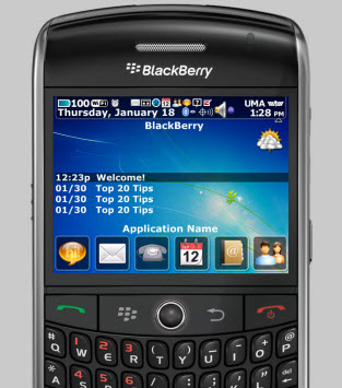 Software download for blackberry 8900 desktop